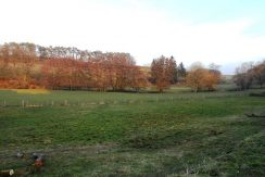 photos-terrains-1