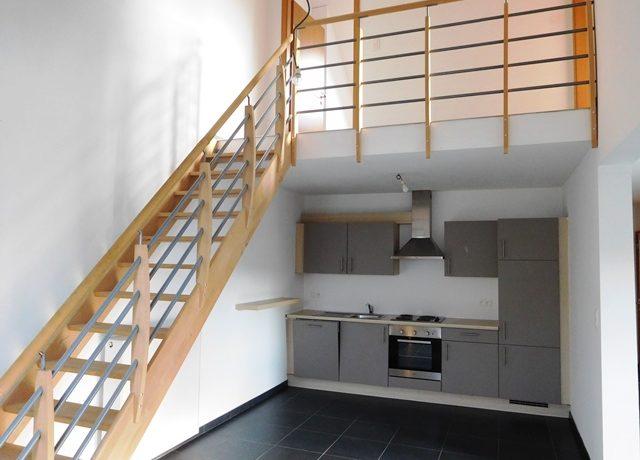 Duplex (3)